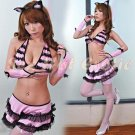 Sexy & Cute Costume Kitty Cat Lingerie Hot Puss Cat Cosplay Dress with Ears CC# 12
