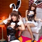 New SEXY & HOT Party Girl Cosplay Rabbit Dress Cute women Costume Lingerie CR# 13