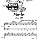 Moths Waltz Opus 157 Easiest Piano Sheet Music Tadpole Edition PDF