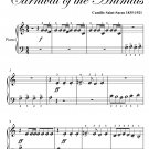 Royal March of the Lion Carnival of the Animals Beginner Piano Sheet Music PDF