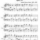 Citizen Spirit Waltz Opus 295 Easiest Piano Sheet Music PDF