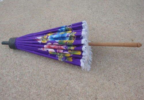Vintage Purple Hand Painted Umbrella