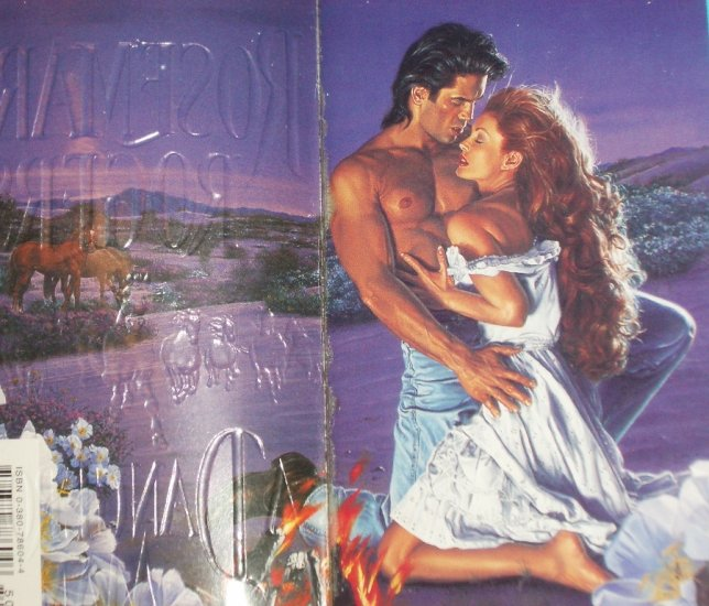 A Dangerous Man by ROSEMARY ROGERS Historical Western Romance 1996