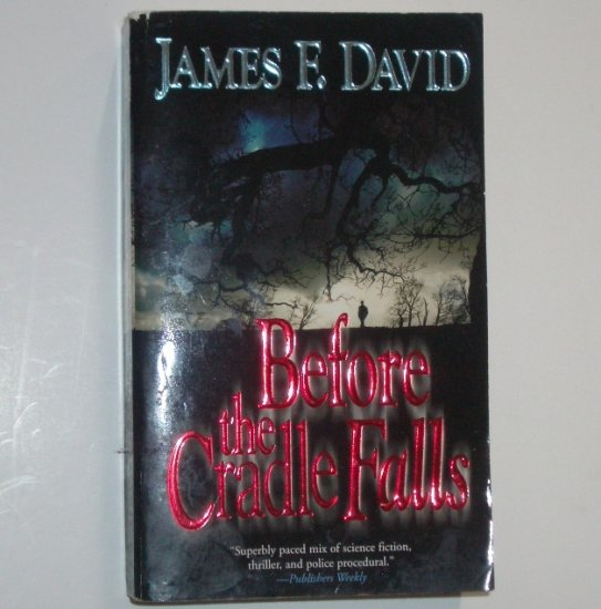 Before the Cradle Falls by JAMES F DAVID Mystery 2004