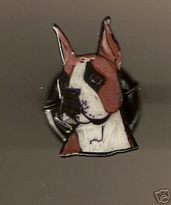 BOXER RING HAND PAINTED AND WIRER WRAPPED