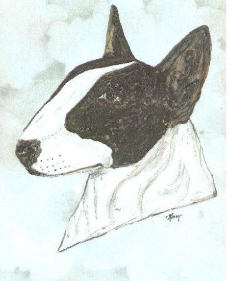 BULL TERRIER HAND PAINTED  PIN  WHITE or  COLORED