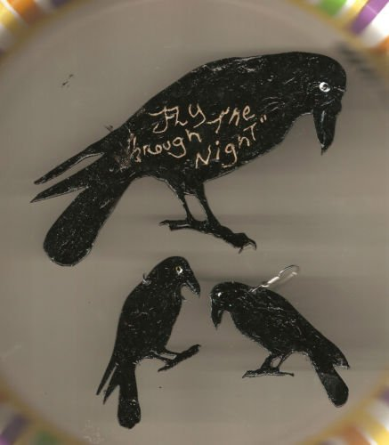 CROW RAVEN GRATEFUL DEAD  EARRINGS AND PIN SET