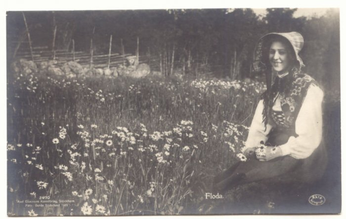 PRETTY LADY, FIELD OF DAISIES, VINTAGE Unused PHOTO POSTCARD   4