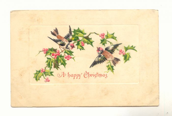 TWO BIRDS ON HOLLY BRANCH VINTAGE 1907 POSTCARD   68