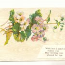 DAINTY GERANIUMS LOVING BIRTHDAY VINTAGE 1910 POSTCARD  85