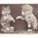 WATCH YOUR STEP, DRESSED KITTEN, PUPPY VINTAGE POSTCARD    112