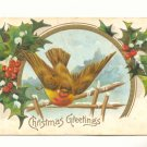 LARGE BIRD, HOLLY, 1908 VINTAGE CHRISTMAS POSTCARD   123