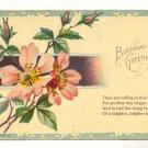 PINK WILD ROSES BIRTHDAY VERSE 1908 VINTAGE POSTCARD   149
