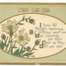 DON'T YOU CARE, FLOWERS, VERSE, 1915 BIRTHDAY POSTCARD   #156