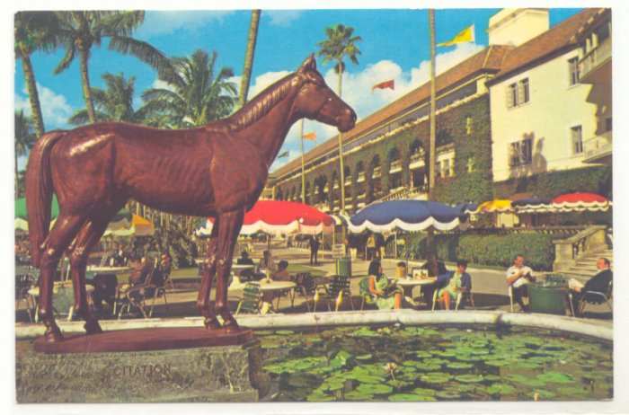 BRONZE STATUE CITATION, HIALEAH RACE COURSE FLORIDA  CHROME POSTCARD #180