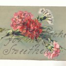 RICHES FOR MY SWEETHEART, CARNATIONS, GLITTER, POSTCARD  #220