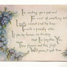SENDING YOU A POSTCARD, FORGET ME NOTS, 1911 VINTAGE   #251