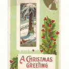 CHRISTMAS GREETING WINTER SCENE, PHEASANT, BELLS HOLLY   POSTCARD #277