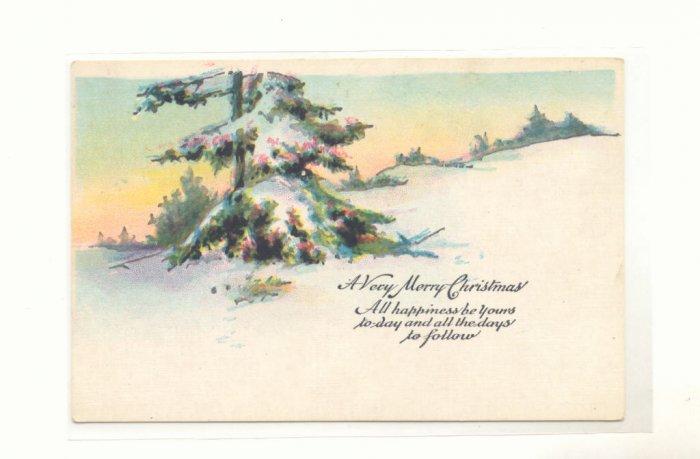 WINTER PINE TREE SCENE CHRISTMAS VINTAGE POSTCARD   #344