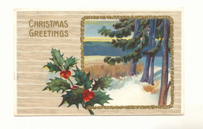 CHRISTMAS GREETING HOLLY MARSH PINE WATER SCENE 1911   VINTAGE POSTCARD #346