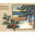 CHRISTMAS GREETING HOLLY MARSH PINE WATER SCENE 1911   VINTAGE POSTCARD #346