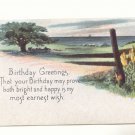 BIRTHDAY GREETING COUNTRYSIDE VIEW VINTAGE POSTCARD    #363