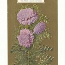 I WRITE TODAY, LOOKING FOR YOUR LETTER, CARNATIONS    Postcard #404