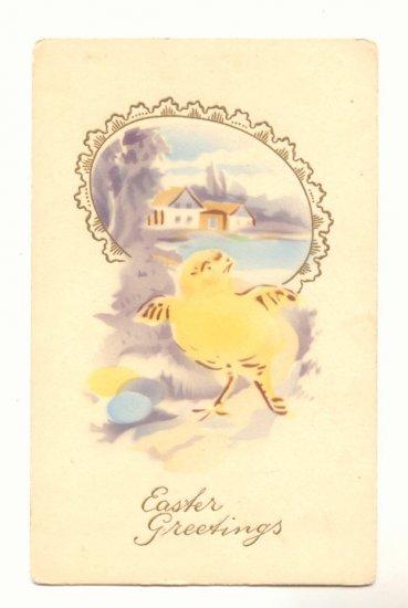 EASTER GREETING, YELLOW CHICK EGG FRAMED SCENE Postcard   #444
