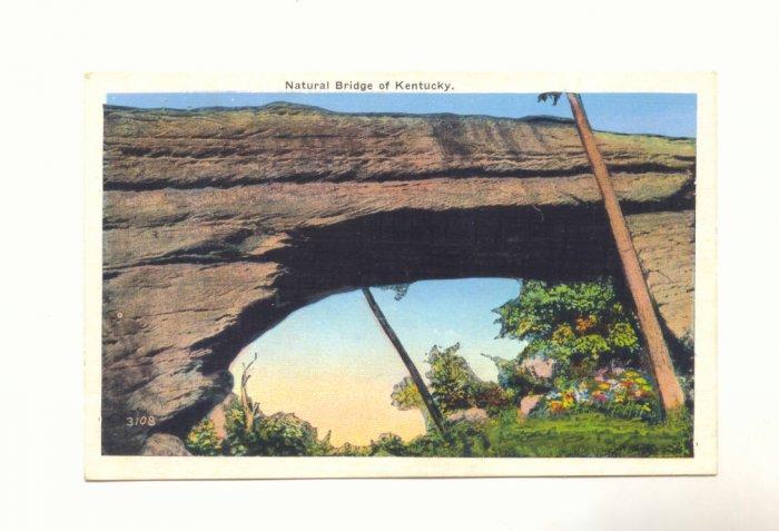 NATURAL BRIDGE OF KENTUCKY, VINTAGE LINEN POSTCARD   #451