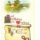 BEST BIRTHDAY COUNTRY SCENE GLITTER VERSE VINTAGE 1915 Postcard #458