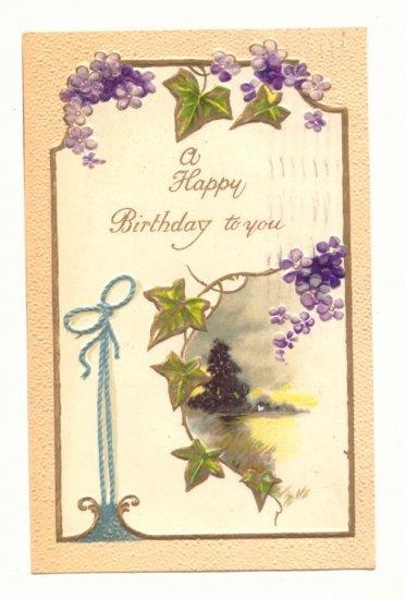 HAPPY BIRTHDAY IVY, VIOLETS, RIBBON, VINTAGE 1909 Postcard #461