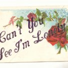 CAN'T YOU SEE I'M LONELY, RED ROSE VINTAGE 1909 POSTCARD #496