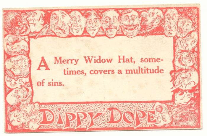 DIPPY DOPE, A Merry Wido Hat, Vintage Unused Postcard   #510
