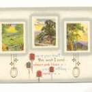 KEEP IN YOUR HEART THIS WISH, MULTI COUNTRY SCENES 1912  Vintage Postcard #520