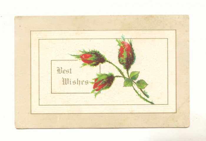 BEST WISHES, MOSS ROSE BUDS, VINTAGE 1912 Vintage Postcard #522