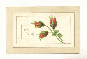 BEST WISHES, MOSS ROSE BUDS, VINTAGE 1912 Vintage Postcard #522