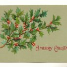 A MERRY CHRISTMAS, PRETTY HOLLY, VINTAGE UNUSED POSTCARD #534