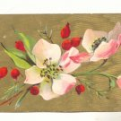 Large Pink Poppies, Gold Background Vintage 1909 Postcard #538