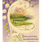 Birthday Bright and Happy, Lily of the Valley, Park Scene Vintage Postcard #540
