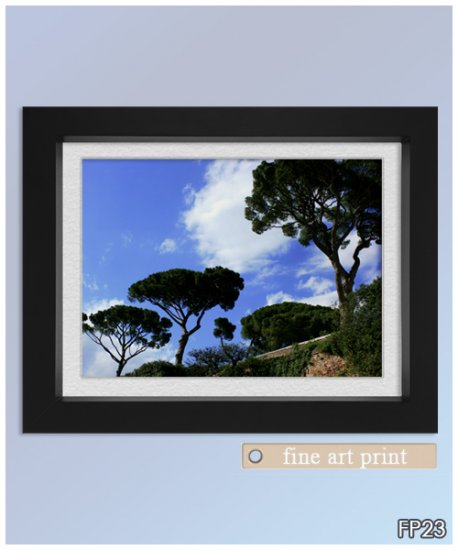 Fine Art Photograph Framed Print #23
