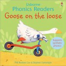Phonics Stories - Goose on the loose and other tales.