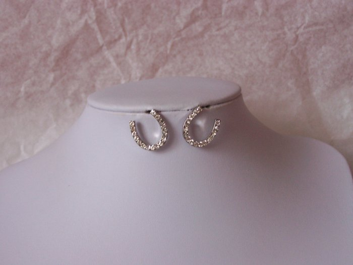 Western Rodeo Clear Crystal Horseshoe Earrings