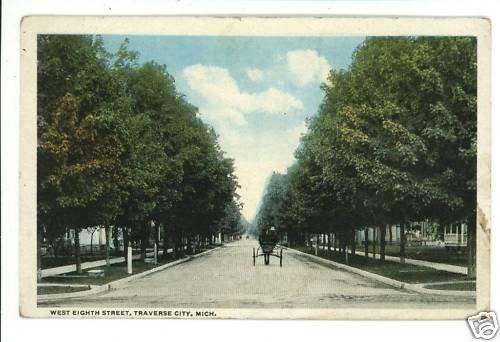 TRAVERSE CITY  MI MICHIGAN EIGHTH STREET HORSE POSTCARD
