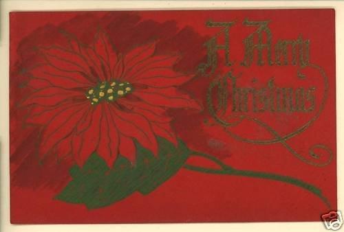 MERRY CHRISTMAS  RED POINSETTIA 1913  POSTCARD