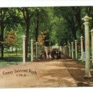CINCINNATI OHIO OH CONEY ISLAND PARK LIGHTS  POSTCARD