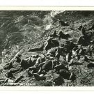 RPPC SEA LIONS AT PLAY  OREGON COAST HIGHWAY 1953 RPPC