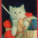 WHITE KITTEN BASKET W/ YARN CAT CATS KITTENS POSTCARD