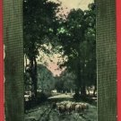 J V D SANDE A LANDSCAPE SHEEP IN PATH 1907  POSTCARD