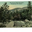 ALBUQUERQUE NEW MEXICO BEAR CANYON SANDIA MTNS POSTCARD