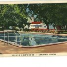 LITTLEFIELD AZ BEAVER DAM LODGE POOL 1942 POSTCARD